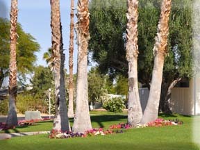 Spa Services in Borrego Springs