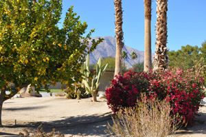 Club Circle East Resort, Borrego Springs